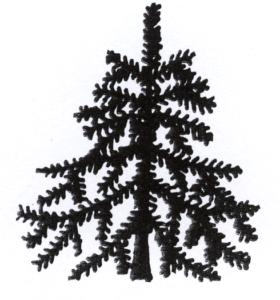 s_tree
